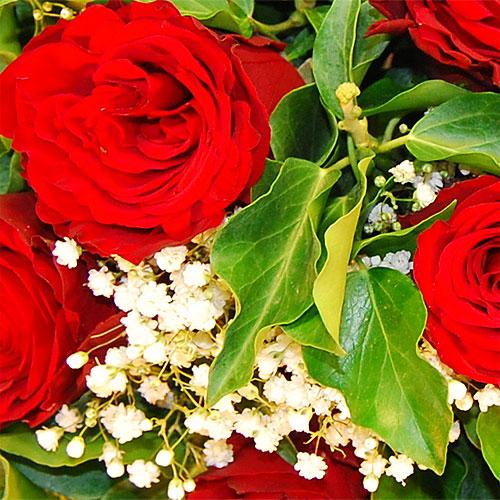 Rosenstrauss zum Valentinstag mit roten Rosen