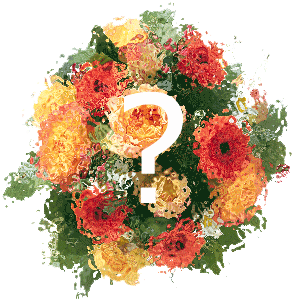 Blumenstrauss Blumen der Saison